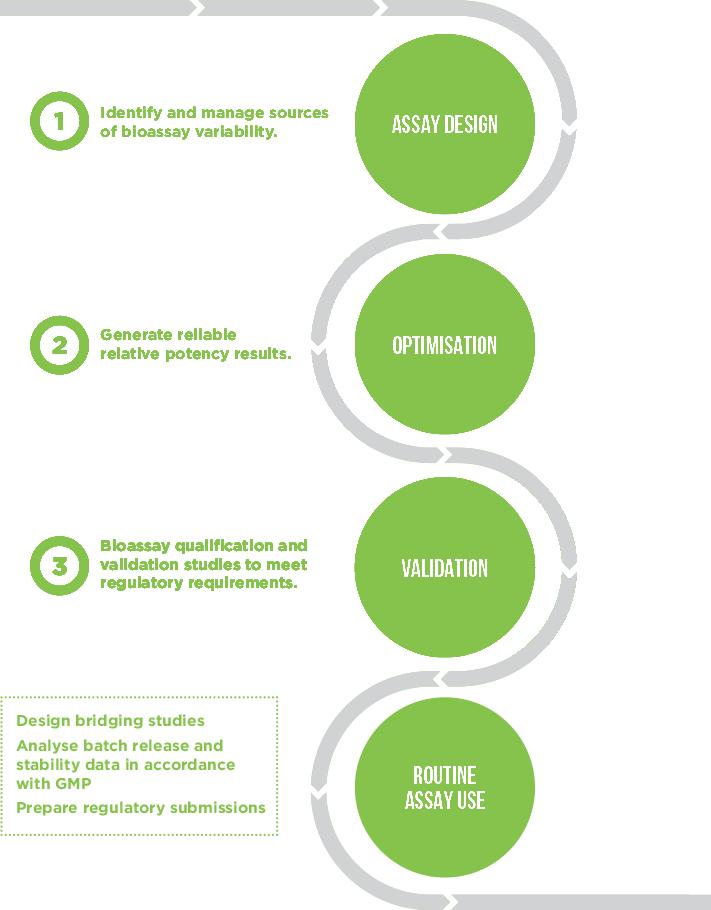 Bioassay-Development-Pathway